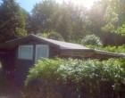 Værelse Gardenhouse for rent