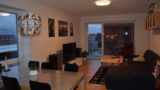 Værelse Roomie søges til 4-værelses i Risskov
